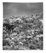 All Out Gallop Fleece Blanket