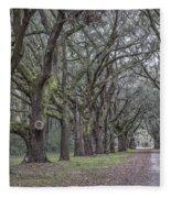 Allee Of Oak Tree's Fleece Blanket