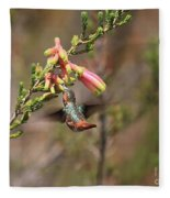 Allen Hummingbird In Flight Fleece Blanket