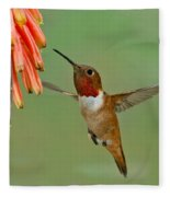 Allens Hummingbird At Flowers Fleece Blanket