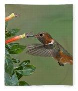 Allens Hummingbird Feeding Fleece Blanket
