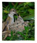 Allens Hummingbird Feeds Young Fleece Blanket