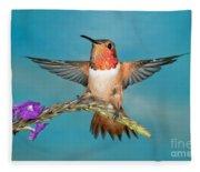 Allens Hummingbird Male Fleece Blanket