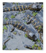 Alligator Babies IIi Fleece Blanket