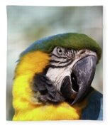 Alligator Farm Resident Fleece Blanket