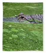 Alligator In Swamp Fleece Blanket