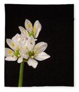 Allium Species 1 Fleece Blanket