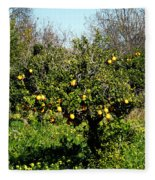 Almanzora Mountain Lemons Winther Spain Fleece Blanket