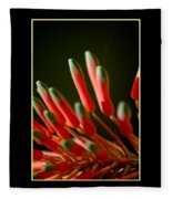 Aloe Bloom Window 2 Fleece Blanket