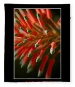 Aloe Bloom Window 3 Fleece Blanket