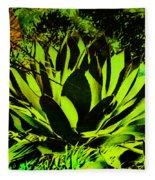 Aloe Fleece Blanket