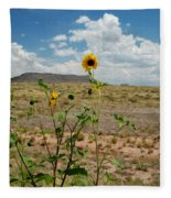 Along Route 66 In Arizona Fleece Blanket