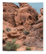 Along The Path Fleece Blanket