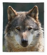Alpha Male Wolf - I'm Watching You Fleece Blanket