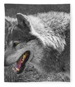 Alpha Male Wolf - You Look Tasty 2 Fleece Blanket