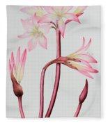 Amaryllis Belladonna Fleece Blanket