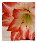 Amaryllis In Spring Fleece Blanket