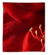 Amaryllis6739 Fleece Blanket