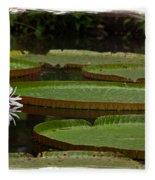 Amazon Lily Pad Fleece Blanket