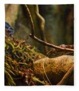 Amazon Tree Boa Fleece Blanket