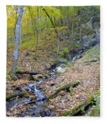 Amber Malanaphy Springs Fleece Blanket