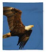 American Bald Eagle Close-ups Over Santa Rosa Sound With Blue Skies Fleece Blanket