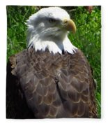 American Bald Eagle Fleece Blanket