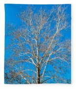 American Beech Fleece Blanket