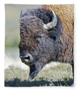 American Bison Closeup Fleece Blanket