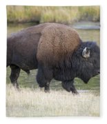American Bison On The Madison River Fleece Blanket