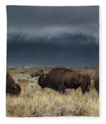 American Bison On The Prairie Fleece Blanket