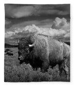 American Buffalo Or Bison In The Grand Teton National Park Fleece Blanket