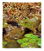 American Bullfrogs Rana Catesbeiana Fleece Blanket