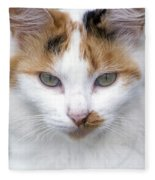 American Calico Cat Portrait Fleece Blanket
