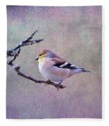 American Goldfinch 2 Fleece Blanket