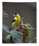 American Goldfinch 5 Fleece Blanket