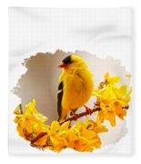 American Goldfinch Branch Of Forsythia Fleece Blanket