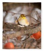 American Goldfinch In Winter Fleece Blanket