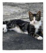 American Grey Tiger Stripe Kitten Portrait Fleece Blanket