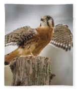 American Kestral Fleece Blanket