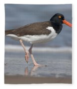 American Oystercatcher On Beach Fleece Blanket