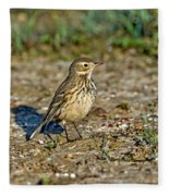 American Pipit Fleece Blanket