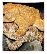 American Toads  Fleece Blanket