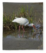 American White Ibis Fleece Blanket