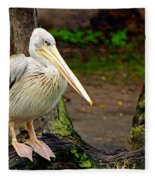 American White Pelican Fleece Blanket