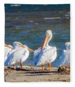 American White Pelicans Fleece Blanket