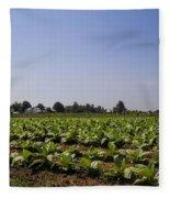 Amish Tobacco Fields Fleece Blanket