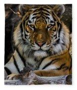 Amur Tiger Watching You Fleece Blanket