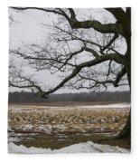 An Appleton Tree And Field In Winter Fleece Blanket