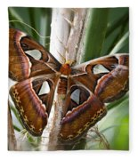 An Atlas Moth  Fleece Blanket